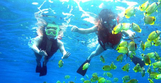 Snorkeling a Ustica