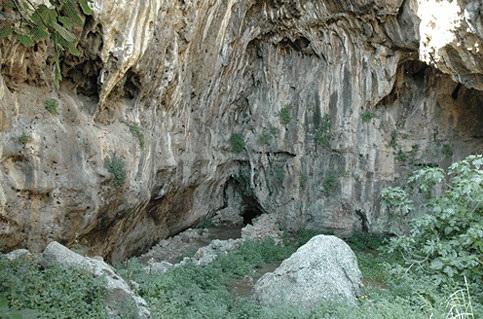 Visita a Grotta della Molara, Monti di Billiemi (PA)
