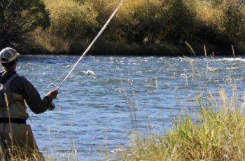 pescare nel fiume simeto